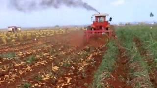 Repeat youtube video Potato digger. 2 Rows /Arrancadora de patatas. 2Hileras /Arracheuse pommes de terre. ID-david