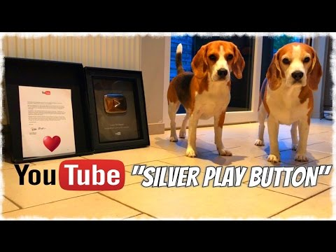 Happy Dogs Unboxing Their 'YOUTUBE SILVER PLAY BUTTON'.