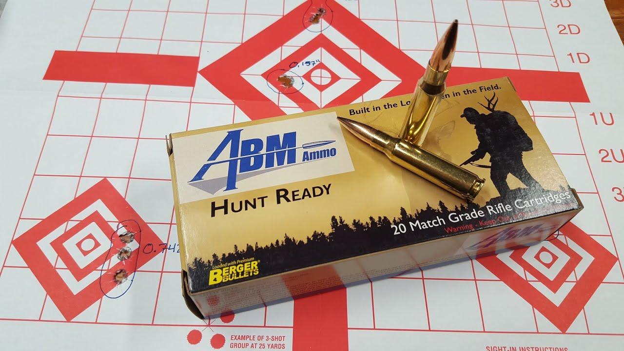 ABM Ammo - Savage 10T Rifle  308 win - Accuracy Test