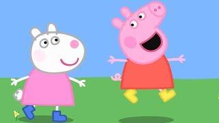 Peppa Pig Świnka Peppa po Polsku   Utalentowane Dzieci   Bajki Po Polsku thumbnail