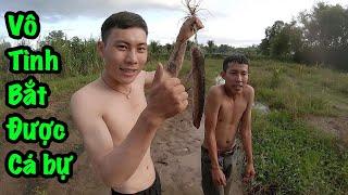 tú nguyễn vlogs dắt ae ra đồng bắt cá vô tình mò được con cá lóc bự chảng TTN Vlogs