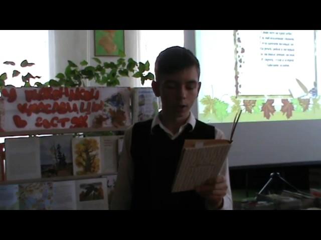 Изображение предпросмотра прочтения – обоянская центральнаядетская библиотека читает произведение «Перед дождем» Н.А.Некрасова