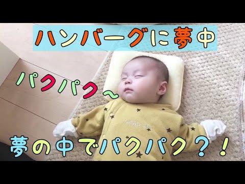 【生後2ヶ月】テレビのハンバーグに夢中!夢の中でパクパク!! - YouTube