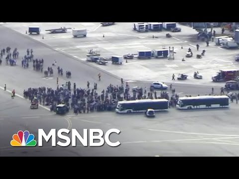 Florida Airport Shooting Claims Several Lives | MSNBC