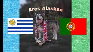 ⚽ MŚ 2018 1/8 Urugwaj - Portugalia - Ares typuje, kto wygra mecz / Ares Alaskan