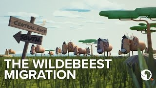 The Great Wildebeest migration: An animation