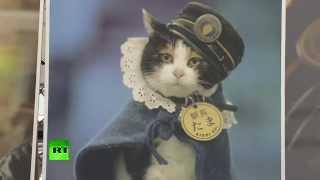 В Японии умерла кошка-станционный смотритель Тама