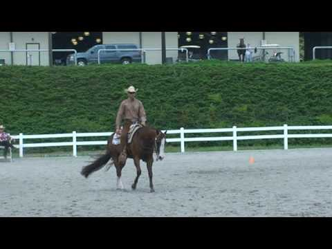 SOLD-I Be Zipping High Point Western Riding 2008