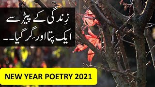 New Year Poetry 2020 New Year Status 2020 Whatsapp Sad New Year Status 2020