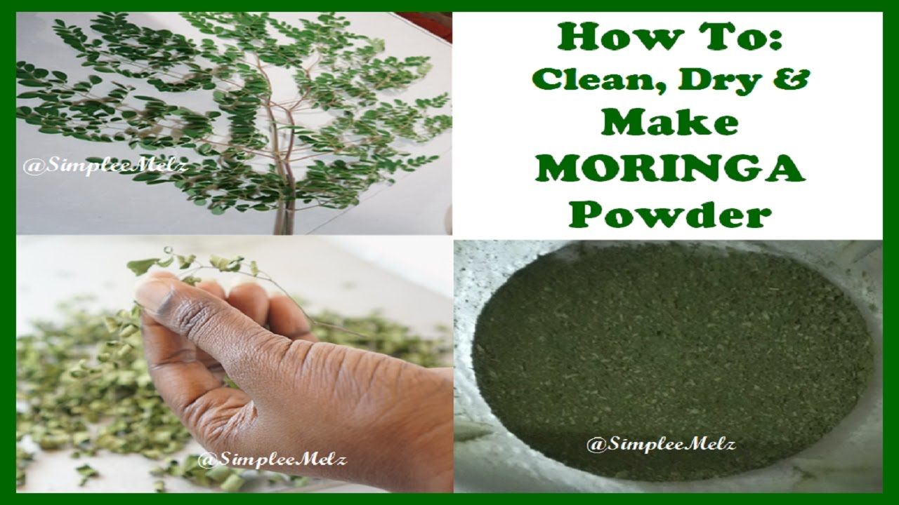 moringa oleifera wash By irreversibly binding the disinfecting protein contained within the moringa seed  and washing the moringa–functionalized sand with water, we.