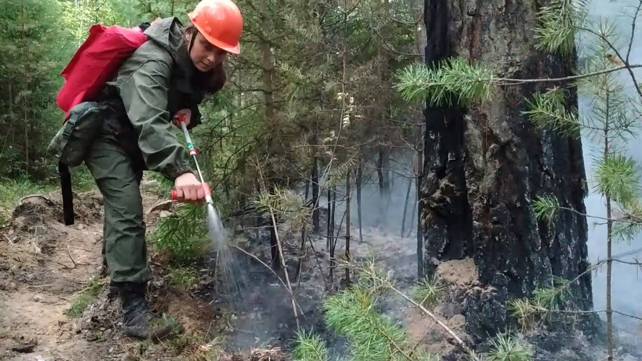 Волонтеры тушат лесной пожар в поселке  Сагра