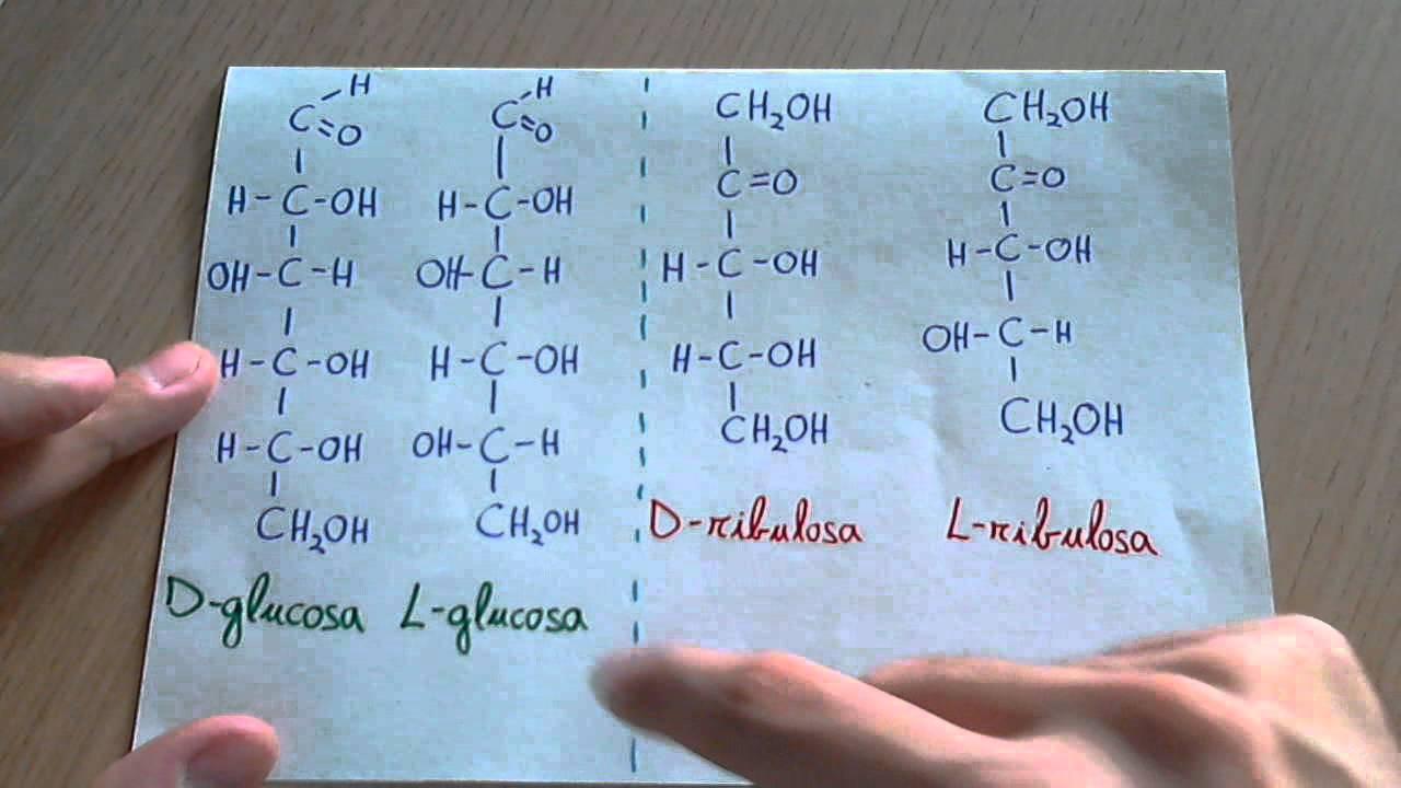hidratos de carbono clasificacion y nomenclatura