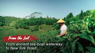 From the Soil 2020 Wuzhou from ancient tea boat waterway to new Silk Road