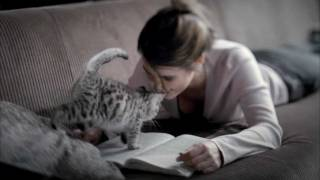 Whiskas® для котят - Где мама?(Больше информации на сайте http://whiskas.ru/, 2012-05-23T07:18:38.000Z)