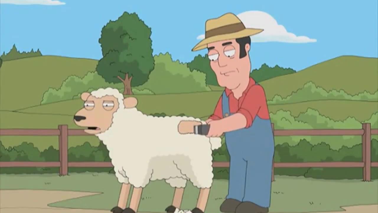 family guy sheep shearing skit