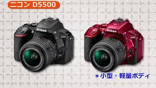 ニコン D5500 説明動画(カメラのキタムラ動画_Nikon)