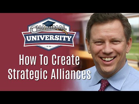 How to Create Killer Strategic Alliances & Dominate Your Marketing - Chanimal Webinar
