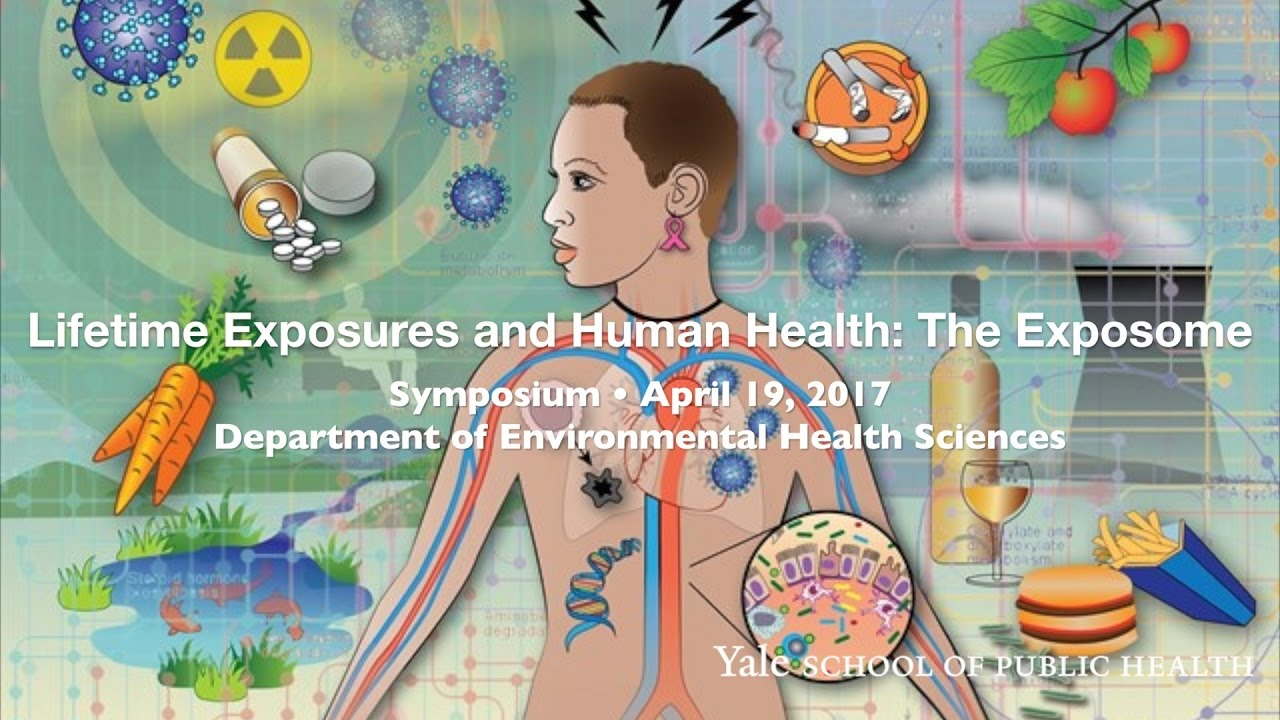 Lifetime Exposures and Human Health: The Exposome