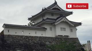 Ini adalah video jalan2 saya ke taman bunga AJISAI DILOKASI KOFU CA...