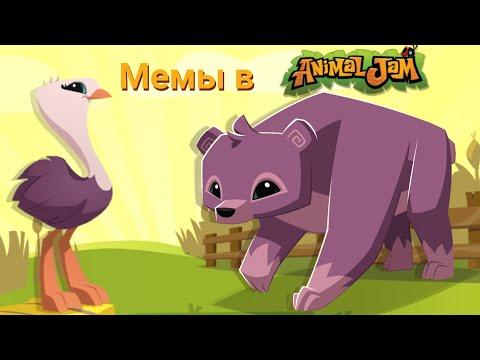 Мемы в энимал джем плей вайлд/ mems in animal jam play wild (AJPW) №8