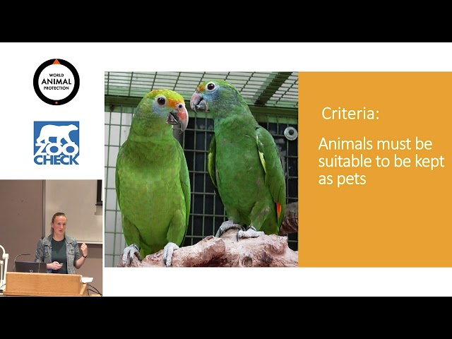 Regulating Exotic Pets An Introduction to the Pet Positive List