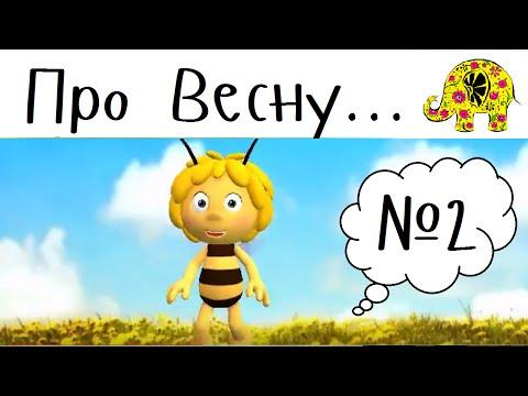 Пчелка Майа и его детская загадка про весну. Загадка для детей от Пчелки Майи