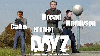 Cake, Dread и Maddyson играют в DAYZ (самые интересные моменты)