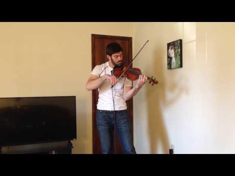 Whispers in the Dark - Skillet (violin cover)
