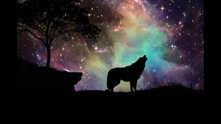 Connexion aux peuples des Loups