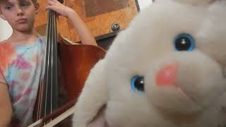 Fox and Goose on the Double Bass - The Funny Bunny Show