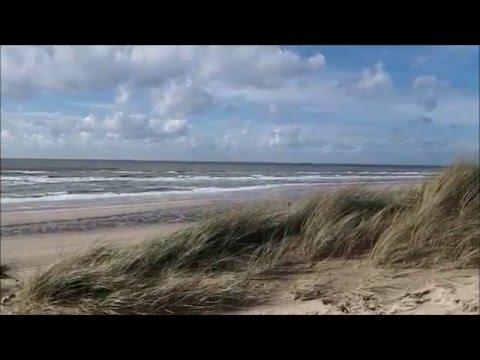 Psalm 45 vers 7 - Pieter Heykoop