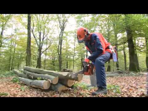 Как пилить деревья бензопилой видео