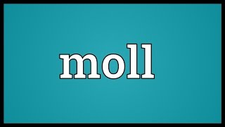 Moll Meaning