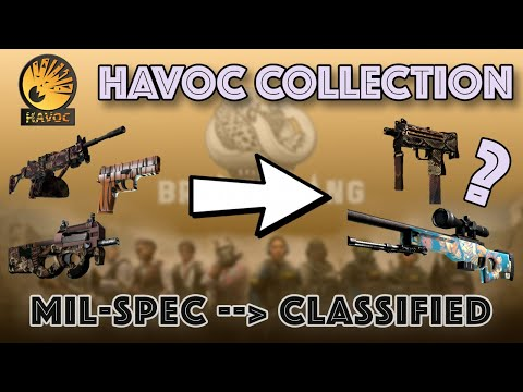 CS:GO | Havoc Collection | from Mil-Spec to Classified