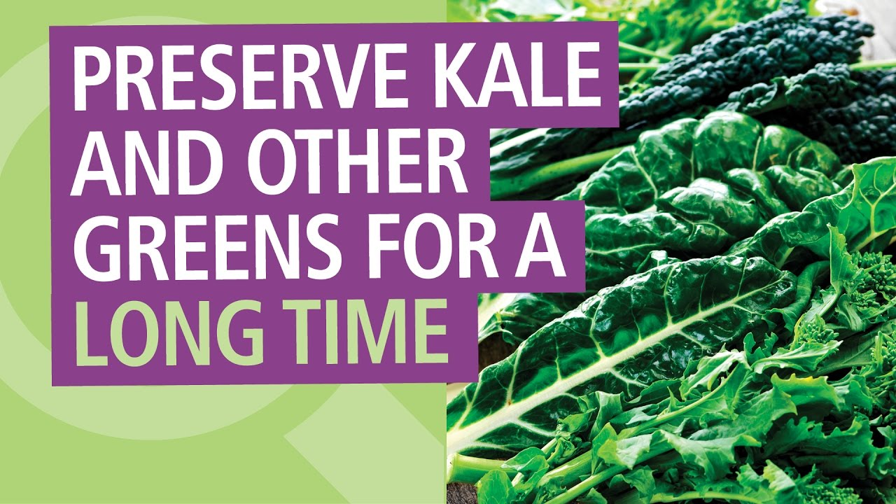 How To Preserve Kale and Other Greens for a Long Time