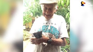 Kittens Secretly Raised by Grandpa After His Wife Tells Him Not To | The Dodo
