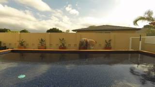 Gambar cover Poolside Plant Installation