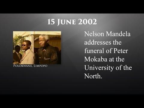 The Mandela Diaries: 15 June 2002