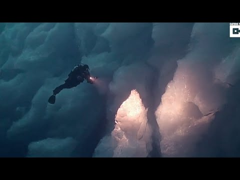 Stunning footage shows underwater marine life beneath Greenland
