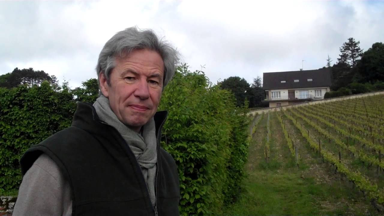 Clos Des Lambrays And Marquis D Angerville Connections To Wine