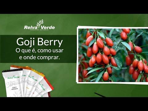 Goji Berry - O que é, como usar e onde comprar.