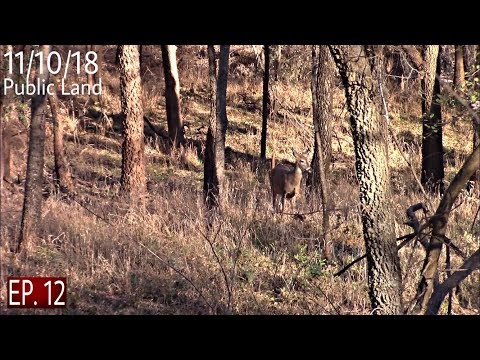 Biggest Buck Of My Life Public Land Bow Hunt |Deer Hunting 2018|