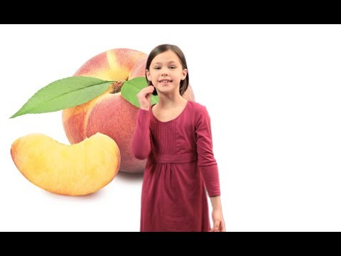 Asl Food Song Lesson For Kids