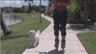 Rollerblading : How to Rollerblade With Dogs