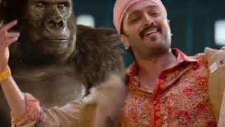 Total Dhamaal Comedy Scene Part 2| Total Dhamaal New Movie | Bollywood