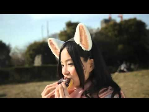 Electronic cat ears that respond to your emotions WTF spaceg