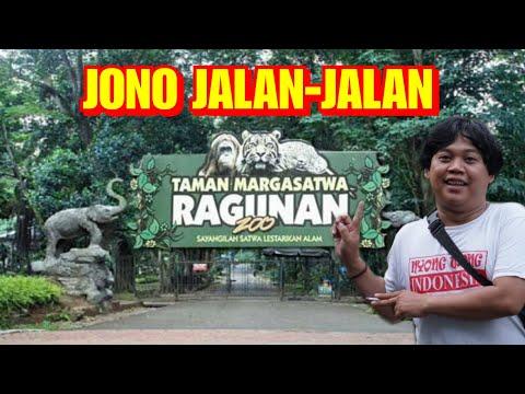 Jalan-jalan Ke RAGUNAN ZOO- JAKARTA