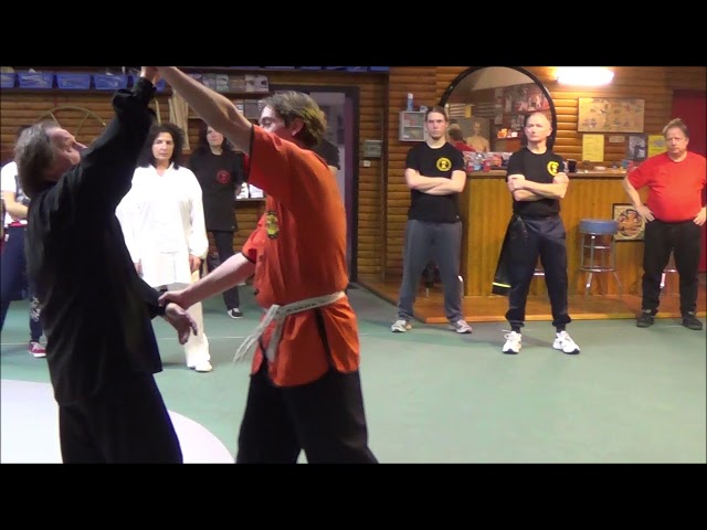 GM Walter Toch with fajin from the Chen Taiji style and selfdefense