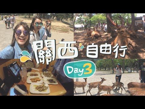 關西自由行|Day3 奈良一日遊 晚餐串燒吃飽飽《奈良→道頓崛》