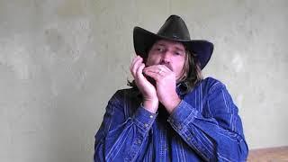 �������� ���� Техасское кантри на губной гармонике
